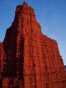 Rock Climbing Photo: Cottontail Tower