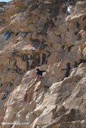 Rock Climbing Photo: Climber on a wet Carlin in April.