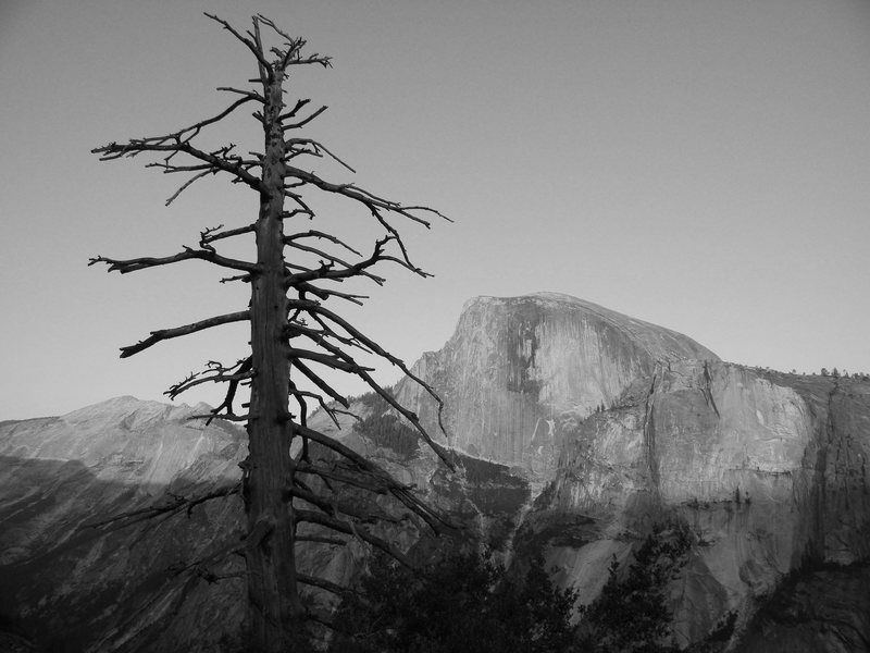 Half dome from atop the columne