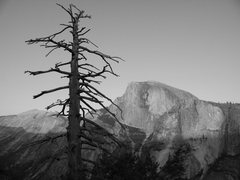 Rock Climbing Photo: Half dome from atop the columne