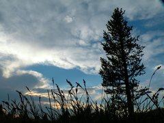 Rock Climbing Photo: Tuolumne meadows