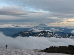 Rock Climbing Photo: Muir Snowfield - Mt. Rainier