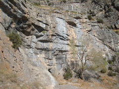 Rock Climbing Photo: Buckley's Mine Wall. Definitely room for more rout...