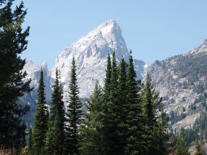Rock Climbing Photo: The Grand From Lupine Meadows Trail