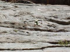 Rock Climbing Photo: Hope 5 climbing Gumby Cat clean.