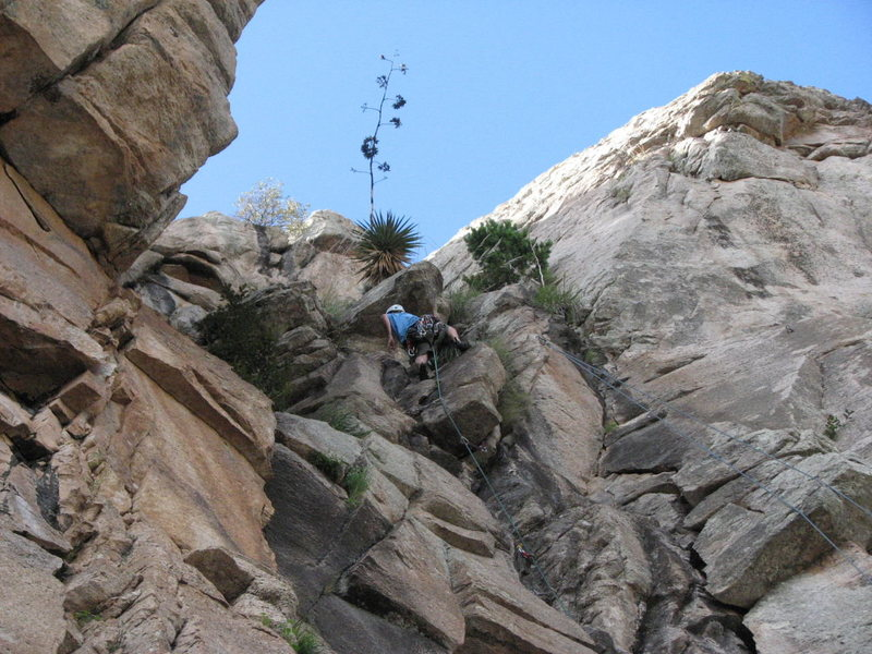 """Christian on the finish of """"Do You Want To Live Forever"""" with """"Toa Of Choy"""" finish to the right where the rope is! I originally posted the pic with the wrong climb, anyway here is the correct photo with the correct climb. Sorry for the confusion.<br> <br> Photo: Andy T."""