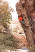 Rock Climbing Photo: Is there any bouldering at Tamo?  This 20 footer s...