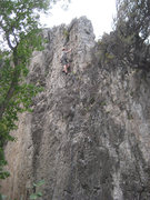 Rock Climbing Photo: Jonny Wilson nearing the top of Monkey Bars (5.9+)...