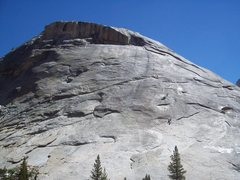 Rock Climbing Photo: Line up on Zee Tree