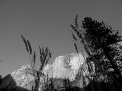 Rock Climbing Photo: Half dome below the grass
