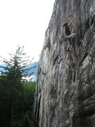 Rock Climbing Photo: Dana working the moves on The Flingus Cling.  This...