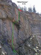 Rock Climbing Photo: Wiled Horses variation.
