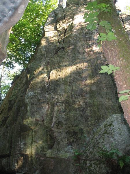 Pine Tree Crack 5.8