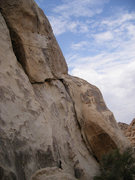 Rock Climbing Photo: Early Bird follows the obvious crack/layback and o...
