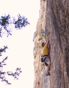 Rock Climbing Photo: a thin undercling move at the last bolt guards the...