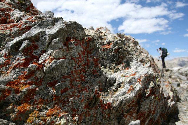Rock Climbing Photo: p