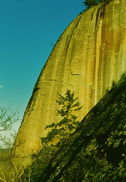 The western edge of the North Face of Looking Glass. Carolina Hog Farm ascends the profile of this buttress on the left.