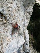 Rock Climbing Photo: BOBBY GRAY HIGH IN THE SKY