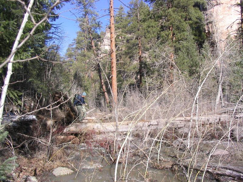 Rock Climbing Photo: Who's afraid of global warming?  Gordo crossing th...