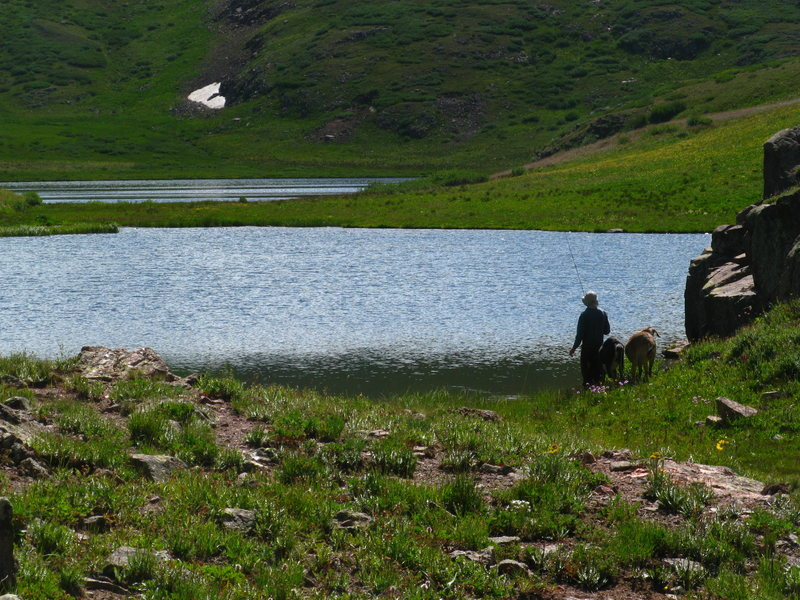 a man fishing with some goats by his side