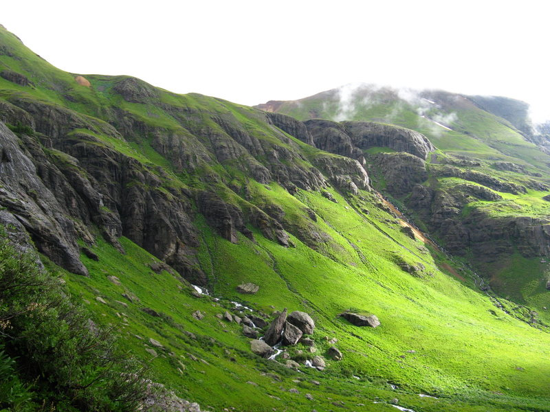 Rock Climbing Photo: nice greens