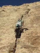 Rock Climbing Photo: Chris on lead