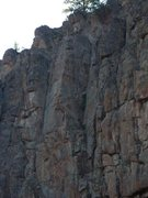 Rock Climbing Photo: Sassafras is directly left of the dihedral. Awesom...