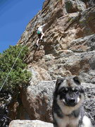Rock Climbing Photo: Cindy Martinson climbing up the lower section of B...