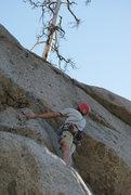 Rock Climbing Photo: Contemplating the crux on Albatross