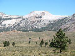 Rock Climbing Photo: Mono Craters, Sierra Eastside
