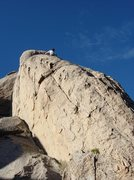 Rock Climbing Photo: Contemplating the crux of One-Eyed Cat.  Photo by ...