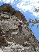 Rock Climbing Photo: Tom Donnelly through the crux of Bowery Boys.