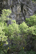 Rock Climbing Photo: Low Tide  1 Aqueous 5.7 2 Syzygy 5.8 3 Bay of Fund...