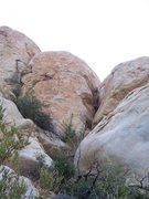 Rock Climbing Photo: Nookie Monster photo.