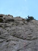 Rock Climbing Photo: The Ho Hum line.
