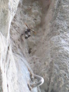 Rock Climbing Photo: Black Wasp Danger 1 sting you will swell up like a...