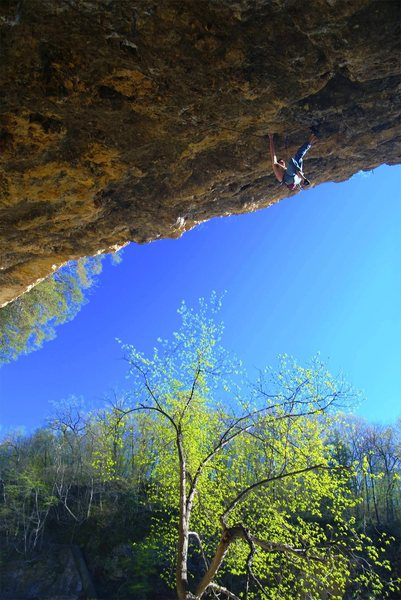 Rock Climbing Photo: Another lap on the amazing 'Natural Selection'. Mi...