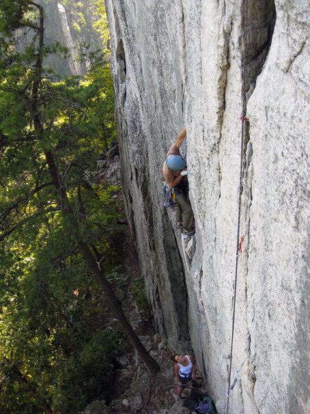 Hutch on Castor, Seneca Rocks, WV.