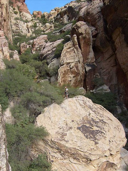 Rock Climbing Photo: Lots of bushwhacking and third class in the easter...