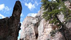 Rock Climbing Photo: photo taken by alysha punnett