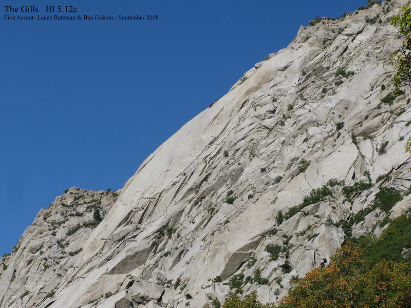 Photo/Topo of new route on The Fin.<br> The Gills  III 5.12c<br> (Zoom in all the way to be able to see it clearly)