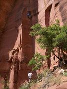 Rock Climbing Photo: Brad sending