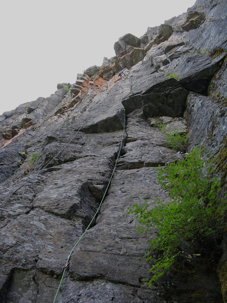 Rock Climbing Photo: Reed Redpointing(FFA) Pitch 1 of K-9 Shanghai