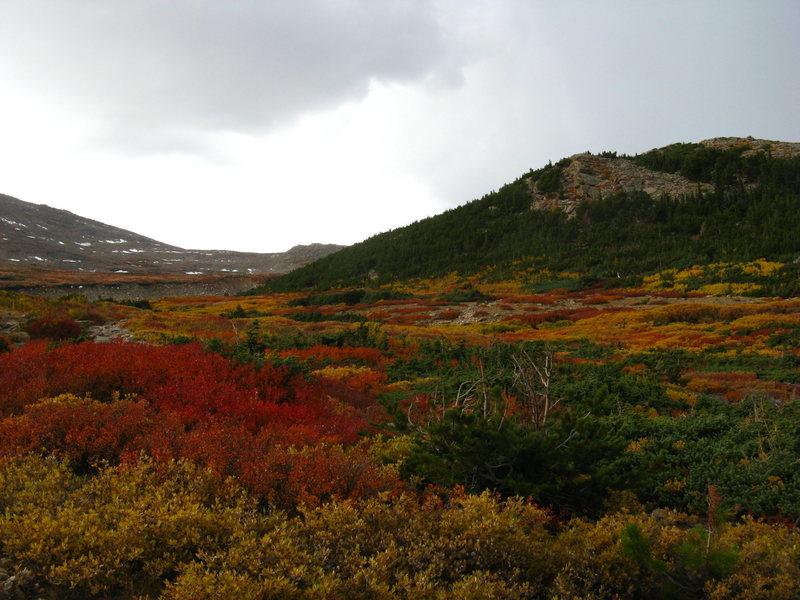 Rock Climbing Photo: seasonal colors