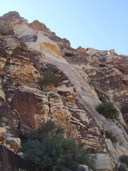 Rock Climbing Photo: Frogland buttress.