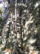 Rock Climbing Photo: start of Le Gourmet