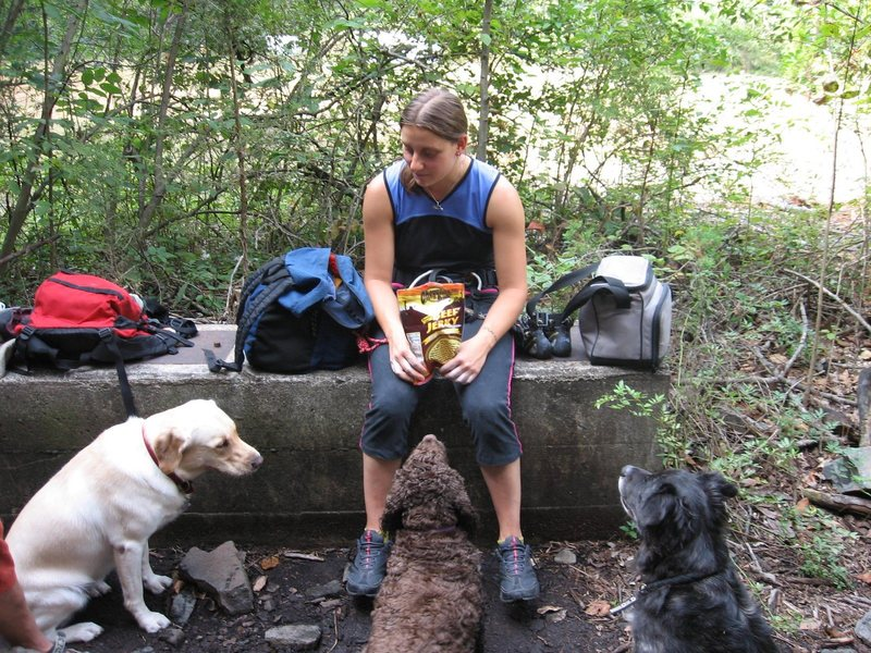 Bring out the dried meat and the dogs will follow.<br> <br> Galena hoarding all the jerky for herself.