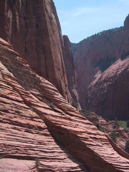 Exploring the canyon.