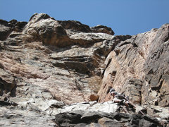 Rock Climbing Photo: Ben Kiessel on the crux pitch.  The Chopper Flake ...
