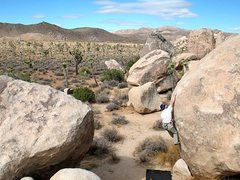 Rock Climbing Photo: Will on Multi Grain (V0), Joshua Tree NP